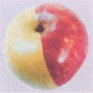 BBB-Series: 'Mutations' (CD 3 EN)