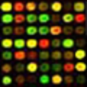 BBB-Serie: 'DNA Technologieën: Processen en Toepassingen' (CD 6 NL)